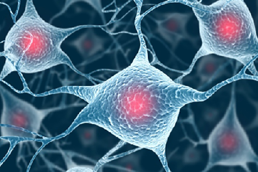 Usa, trovata una correlazione tra cellulari e cancro
