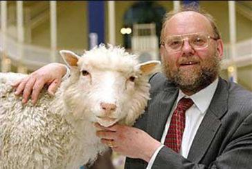 Il primo esperimento di Dolly, la pecora clonata compie 20 anni