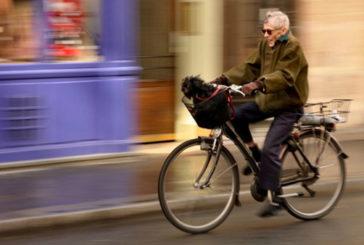 Il cuore over 65 sta meglio con bici e giardinaggio