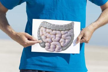 Itri, campagna prevenzione gratuita per tumori colon retto