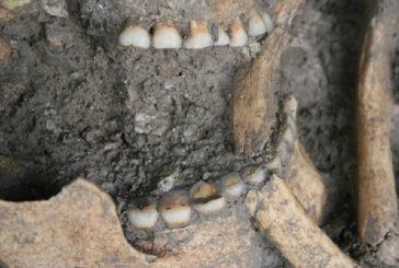 L'origine dell'agricoltura individuata grazie al tartaro degli antenati
