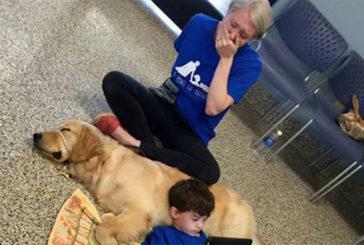 Il bimbo autistico e il suo amico a 4 zampe, la foto che fa il giro del web