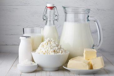 Formaggio, burro e panna non fanno male alla salute