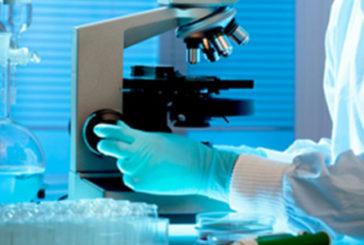 Svelata chiave comportamento aggressivo tumore al pancreas