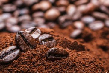 Caffeina aziona enzima difensivo contro la demenza
