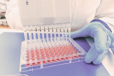 Scoperta molecola anti-diabete prodotta da batteri intestino