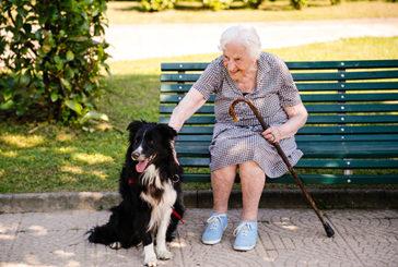 Il cane toccasana per la salute, due mila passi in più al giorno agli anziani