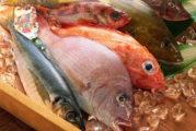 Mangiare pesce aiuta nella cura dell'artrite reumatoide