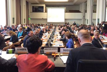 L'Oms adotta il Piano Globale di Azione alla Demenza