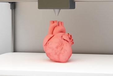 Batte il primo cuore artificiale morbido stampato in 3D