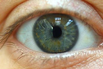 Per la prima volta possibile rigenerare le cellule della retina