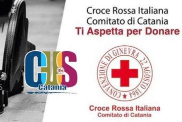 Cus Catania, giornata promozione della cultura della donazione del sangue