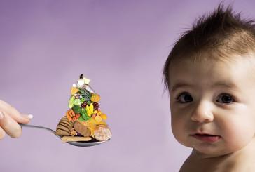 """""""Mio figlio non mangia"""", lo sportello telematico per l'alimentazione dei più piccoli"""