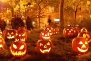 Video sulla chimica della paura, nel cervello delle vittime di Halloween