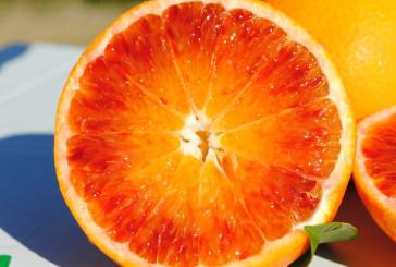 Arancia rossa elisir per pelle perfetta, stop eritemi