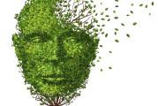 Arriva guida online su strutture sanitarie per cura demenza