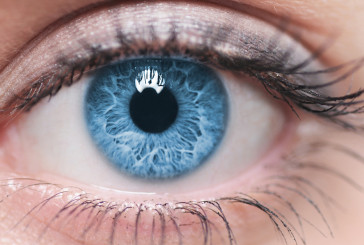 Foto e video più veloci con il transistor che imita l'occhio umano