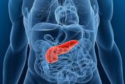 Diabete guarisce con un grammo di grasso in meno nel pancreas