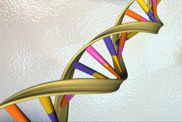Stesse radici per disturbi diversi, opera dei geni tuttofare