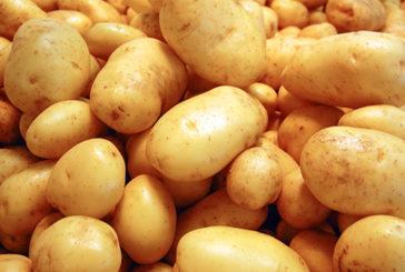 C'è correlazione tra consumare patate e ipertensione