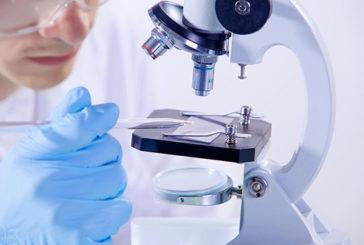 Confermati i vantaggi della biopsia liquida. Risultati su 15.000 malati