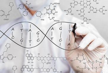Il Dna dell'uomo riscritto dal progetto Genoma 2.0