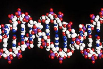 La mappa genetica post mortem