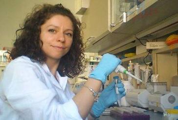 Altre 2 ricercatrici italiane premiate da congresso oncologi Usa