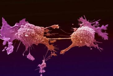 Scrutata la nascita del cancro a cominciare dalla prima cellula impazzita