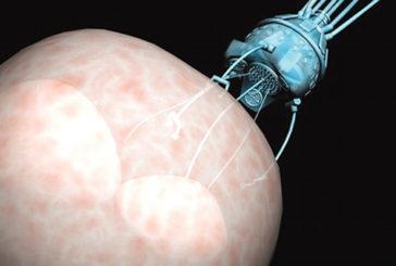 Costruito il primo robot-microbo che si muove come un batterio