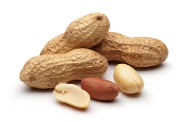 L'allergia alle arachidi si può combattere grazie a immunoterapia