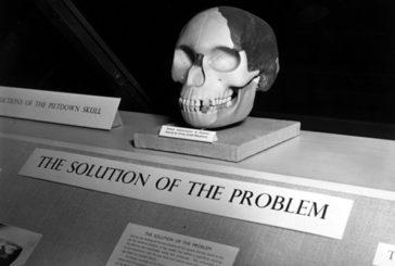 Cranio di Piltdow è uno dei  più grandi falsi della scienza