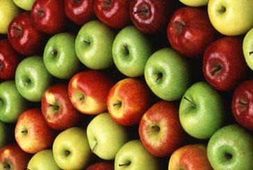 Ecco perche' il succo di mela e' antitumorale