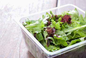 Salmonella, insalate in busta: taglio foglie aumenta rischio