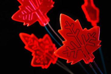 Le nuove mini-fabbriche di farmaci si ispirano alle foglie