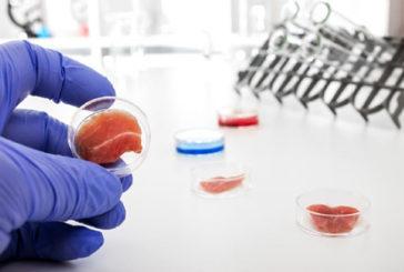 Ottenuta la prima cellula staminale sintetica