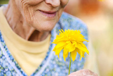 Avere un buon olfatto può aiutare a vivere di più
