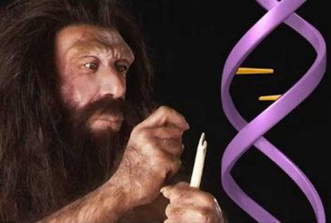Nel nostro Dna ancora presente impronta dei Neanderthal