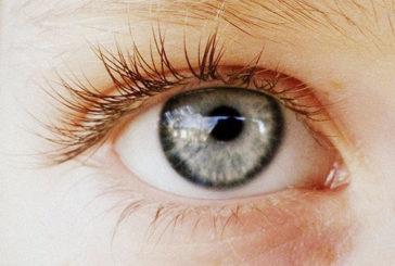 Pupille, l'intelligenza si legge negli occhi