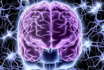 Primo trapianto di staminali nervose per malato sclerosi multipla