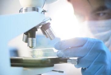 Italiani scoprono 'grilletto' molecolare che aziona un tumore infantile