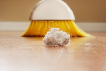 La polvere di casa potrebbe favorire il rischio di obesità