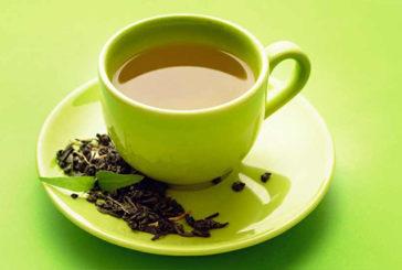 Una sostanza nel tè verde protegge da obesità, demenza e diabete
