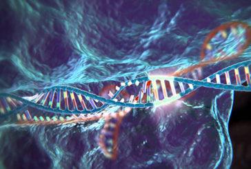Usa, Taglia-incolla Dna: primo successo su embrioni umani