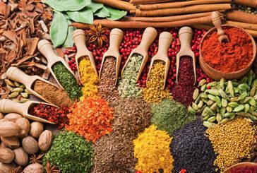 """""""Le spezie della salute in cucina"""", un volume sulle loro proprietà nutrizionali e terapeutiche"""
