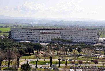 Grosseto – Artroscopia del ginocchio all'ospedale di Orbetello