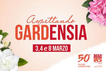 """Aism, 3 e 4 marzo """"Aspettando Gardenia"""" per la ricerca sulla sclerosi multipla"""