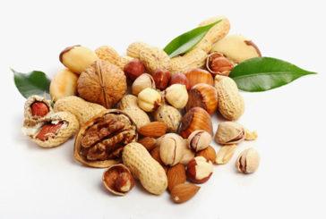 Mandorle, nocciole e noci sono alleate della fertilità maschile
