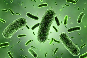 Infezione Mycobacterium, chieste informazioni alle Regioni