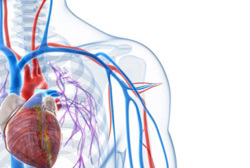 La Chirurgia vascolare dell'Ospedale S.M. Goretti si conferma come Unità operativa di eccellenza